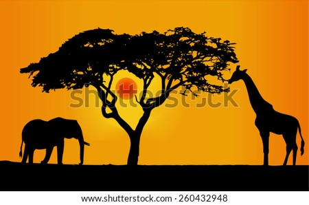 a lone elephant and giraffe