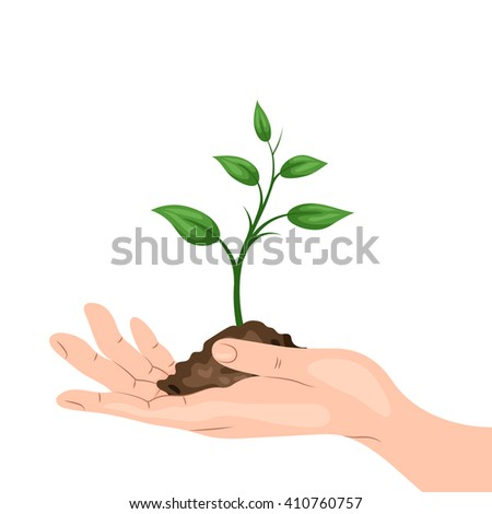a man's hand holding a sprout