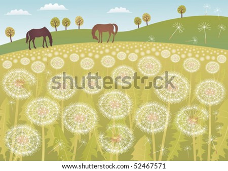 a meadow full of dandelions