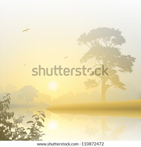 a misty river landscape with