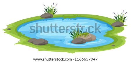 A natural pond on white background illustration