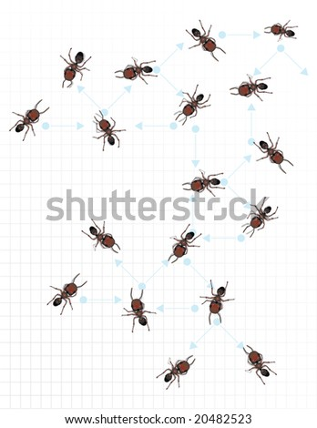 A number of reddish hued worker ants depicted on graph paper.  The graph paper has light blue connector arrows with each ant adjacent to the various directional arrows.
