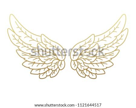 a pair of angel wings  wide