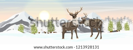 a pair of reindeer on a snowy