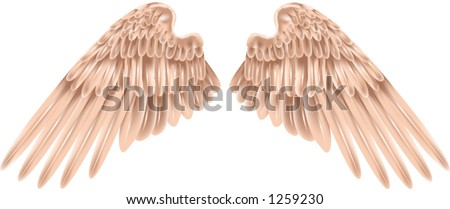 A pair of wings, shading by gradient mesh.