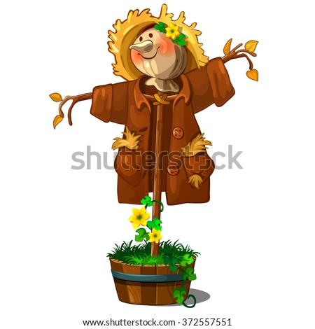 a perfect scarecrow isolated on
