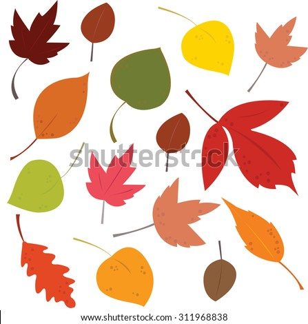 a picture of many fallen autumn