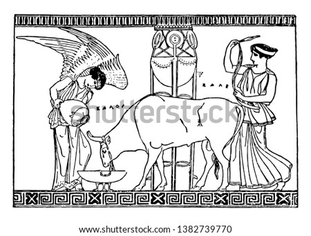 A picture of Nike feeding the bull. Nike is a Greek Goddess of Victory, vintage line drawing or engraving illustration.