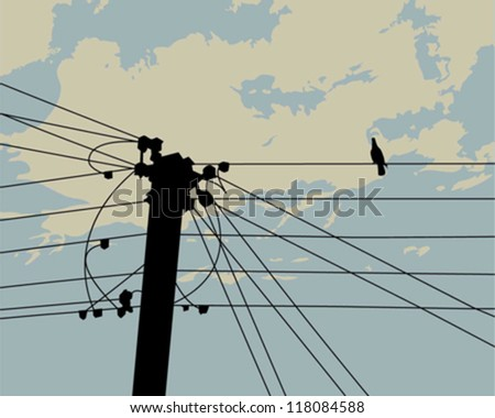 a pigeon on electric cable