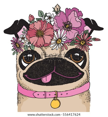 a quirky drawing of a pug