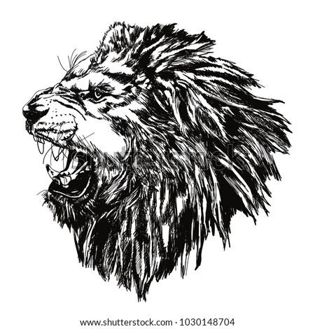 a roaring lion side look hand