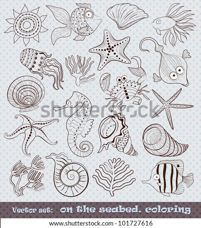 Ocean Coral Drawings Ocean Floor Coral Drawing Sea