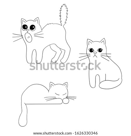 a set of cats with different