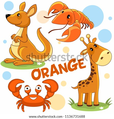 A set of colorful orange illustrations with animals and mollusks for children and design, a picture of a kangaroo, a cancer, a giraffe and a crab.