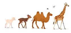 A set of different animals in a cartoon style. Coming camel, deer, giraffe and goat cub.