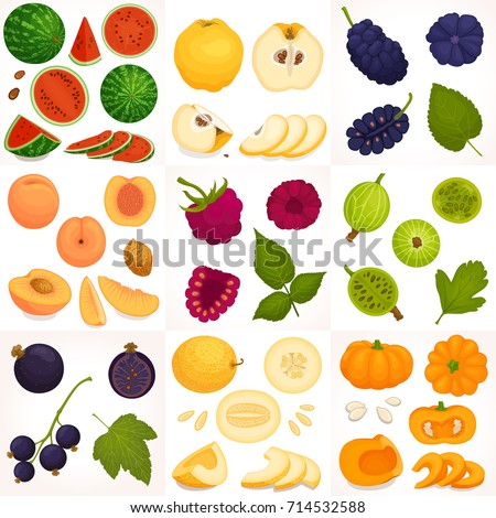a set of different fruits and