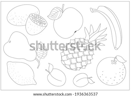 a set of different fruits for