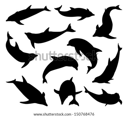 a set of dolphin silhouettes in