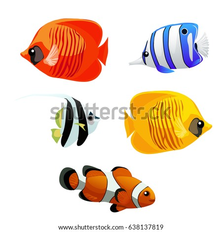 a set of exotic fish isolated