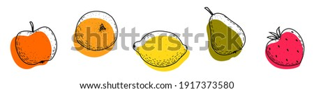 A set of fruit icons on a white background. Apple, orange, lemon, pear, strawberry. Fruit doodles are black with abstract colored shapes. Line drawing style. The objects are isolated. Vector.