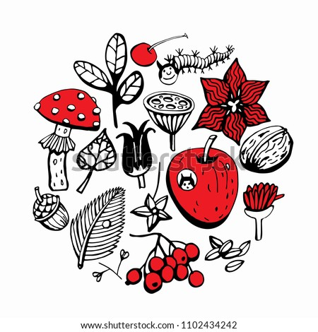 A set of fruits, seeds and berries. Forest finds. Red and black on a white background #1102434242