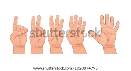 A set of hands. The finger gestures. Vector illustration isolated on white background.