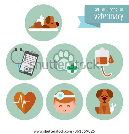 A set of images on the theme of Veterinary with an animals. Flat icons. Vector design templates in cartoon style. Treatment of pets.