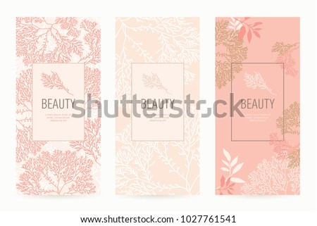 Free Spa Beauty Vector | FreeVectors
