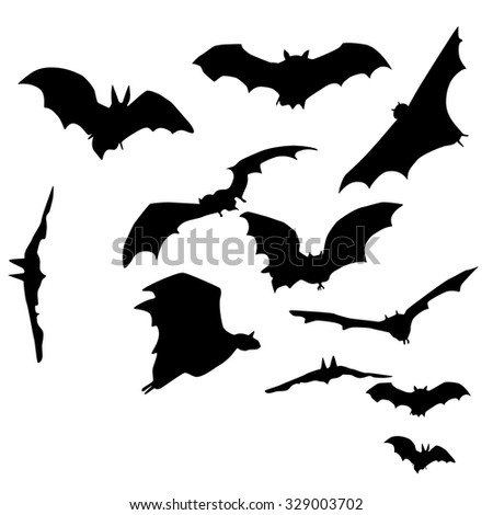 stock-vector-a-set-of-silhouettes-of-bats