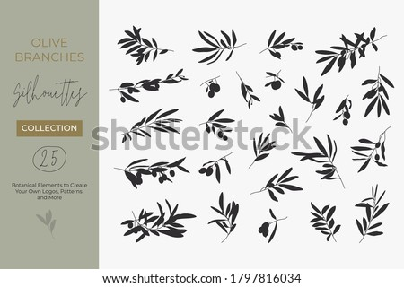 A set of Silhouettes of Olive Branches isolated on a light background in a simple style. Vector Illustrations of Olive Tree Branches With fruits and Leaves to create logos, patterns, and more Stock photo ©