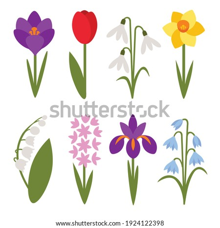 A set of simple icons of spring flowers: crocus, tulip, snowdrop, lily of the valley, daffodil, iris, cockerel, hyacinth Foto stock ©