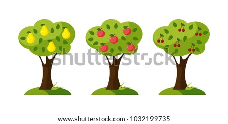 a set of trees  a pear tree  an