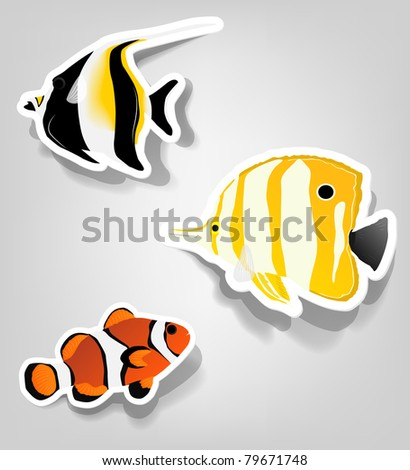a set of tropical fish for advertising diving