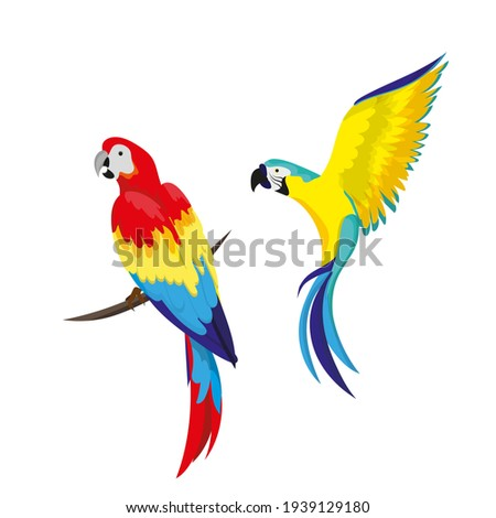A set of tropical parrots. Parrots of various bright colors, in flight and sitting on a branch. Summer design element. Сток-фото ©