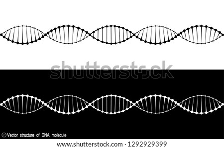 A set of two variants of the DNA molecule. black and white variety. Simple drawing, icon. For your design. Isolated. 10 eps