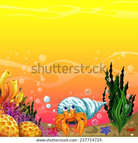 a shell under the sea near the