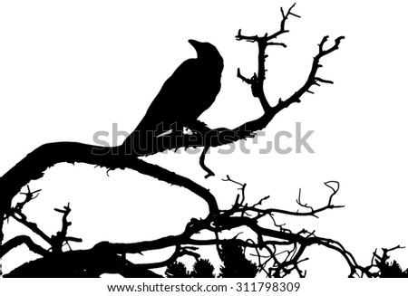 a silhouette of a raven sitting
