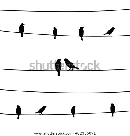 a silhouette of birds on wires