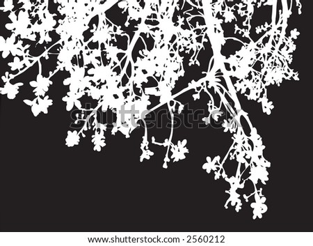 A silhouette of white braches on black