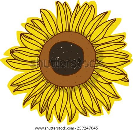a single sun flower