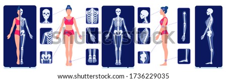 A skeletal system visual aid. X-ray examination pictures. Image of the human skeleton bones. Internal anatomy of a woman. Full-length roentgen. Stock fotó ©