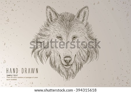 a sketch of a wolf