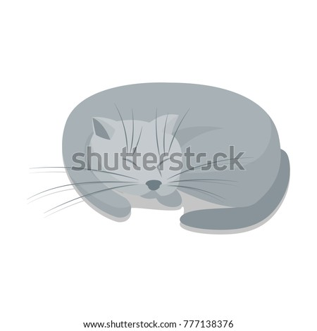 a sleeping gray cat vector