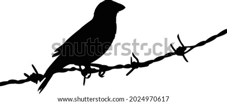 a sparrow on barbed wire