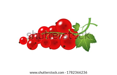 a spring with redcurrant