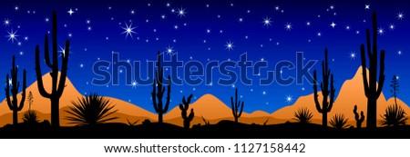 a stony desert at night desert