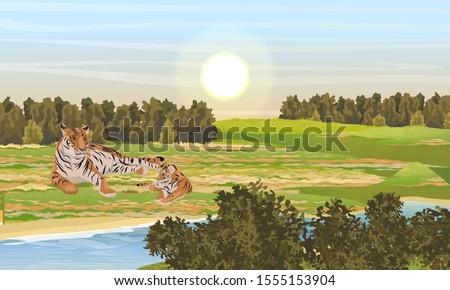 a tigress and her tiger cub