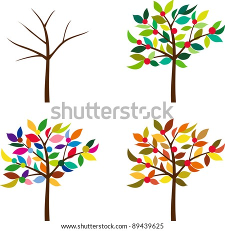 A tree and the Four Seasons
