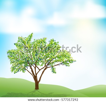 a tree on hill and blue sky