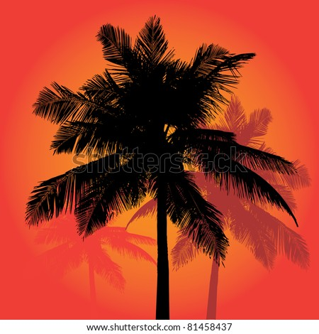 A trio of tropical coconut palm tree silhouettes illustration in vector format.